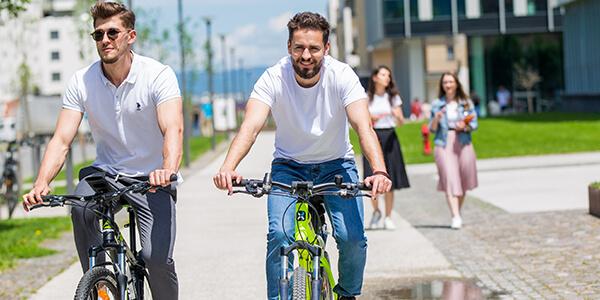 Pegas Bike Sharing-1