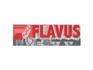 Flavus Investitii